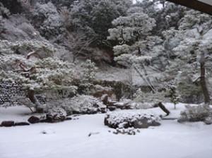 1‐23庭の雪景色