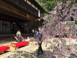 4-9桜まつり校舎と桜