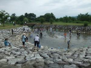 水生生物観察会の様子