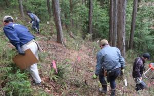 急な斜面で下草刈りを行うメンバー